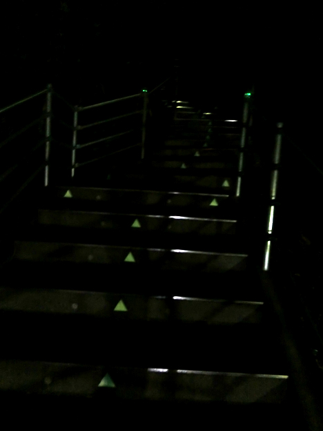 saga stairs night.jpg